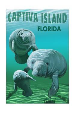 Captiva Island, Florida - Manatees by Lantern Press