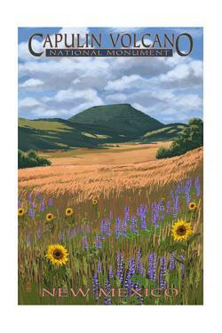 Capulin Volcano National Monument, New Mexico by Lantern Press