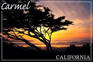 Carmel, California - Cypress Tree Silhouette - by Lantern Press