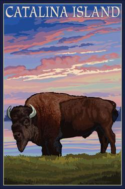 Catalina Island, California - Bison and Sunset by Lantern Press
