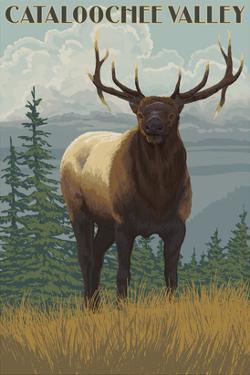Cataloochee Valley, North Carolina - Elk Scene by Lantern Press