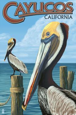 Cayucos, California - Pelicans by Lantern Press