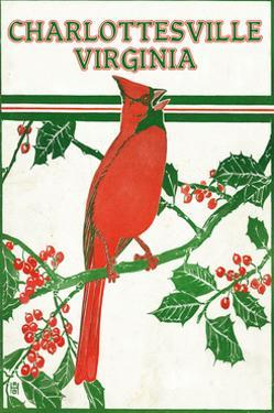 Charlottesville, Virginia - Cardinal Perched on a Holly Branch by Lantern Press