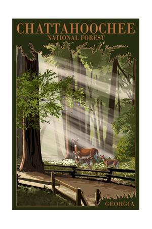 Chattahoochee National Forest, Georgia - Deer and Fawn by Lantern Press
