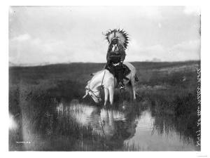 Cheyenne Indian, Wearing Headdress, on Horseback Photograph by Lantern Press