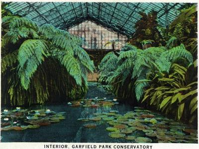 Chicago, Illinois, Scenic Interior View of Garfield Park Conservatory