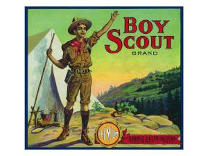 Cincinnati, Ohio, Boy Scout Brand Citrus Label by Lantern Press