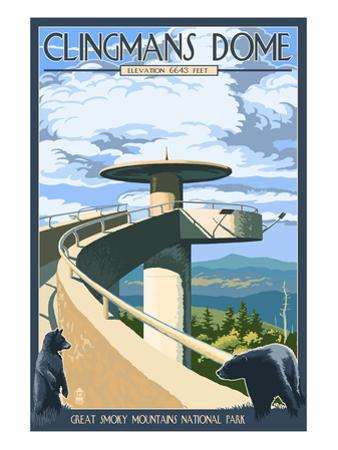 Clingmans Dome - Great Smoky Mountains National Park, TN