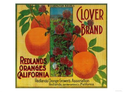 Clover Orange Label - Redlands, CA by Lantern Press