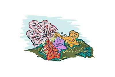 Coral - Icon by Lantern Press