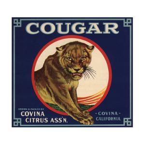 Cougar Brand - Covina, California - Citrus Crate Label by Lantern Press