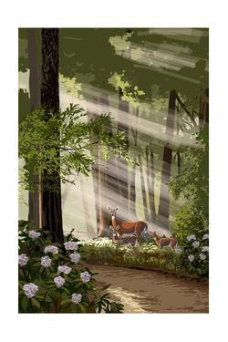 Deer Family and Forest by Lantern Press