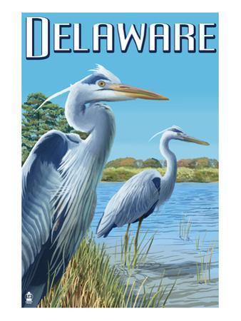 Delaware Blue Herons Scene