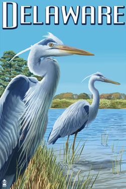 Delaware Blue Herons Scene by Lantern Press