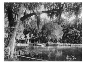 Deleon Springs, Florida - Scenic View by Lantern Press