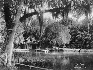 Deleon Springs, Florida - Scenic View by Lantern Press