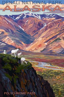 Denali National Park, Alaska - Polychrome Pass by Lantern Press