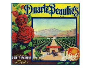 Duarte, California, Duarte Beauties Brand Citrus Label by Lantern Press