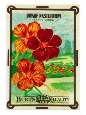 Dwarf Nasturtium Seed Packet by Lantern Press