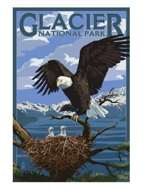 Eagle Perched with Chicks - Glacier National Park, Montana by Lantern Press