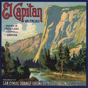 El Capitan Brand - San Dimas, California - Citrus Crate Label by Lantern Press