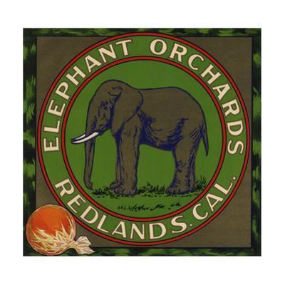 Elephant Orchards Brand - Redlands, California - Citrus Crate Label