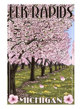 Elk Rapids, Michigan - Cherry Blossoms by Lantern Press
