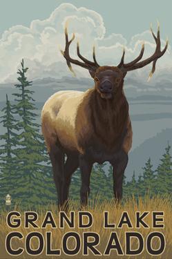 Elk Scene - Grand Lake, Colorado by Lantern Press
