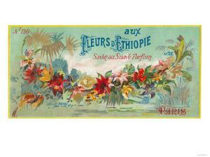 Fleurs D Ethiopie Soap Label - Paris, France by Lantern Press
