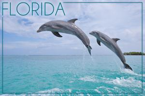 Florida - Jumping Dolphins by Lantern Press