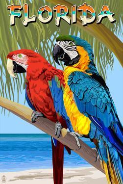 Florida - Parrots by Lantern Press