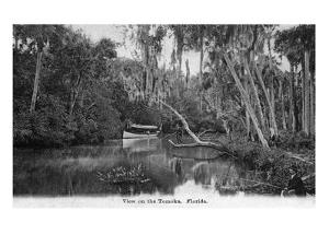 Florida - Riverboat on the Tomoka River by Lantern Press