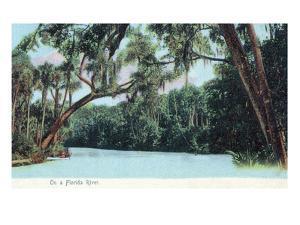 Florida - View of a Florida River by Lantern Press