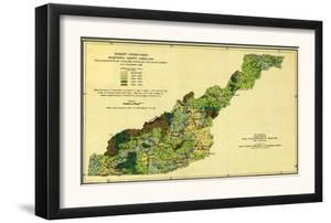 Forests of Western North Carolina - Panoramic Map by Lantern Press