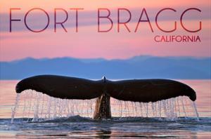 Fort Bragg, California - Whale Fluke and Sunset by Lantern Press