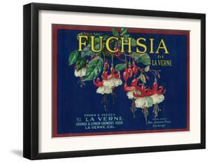 Fuchsia Lemon Label - La Verne, CA by Lantern Press