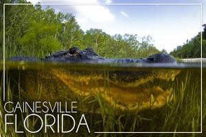 Gainesville, Florida - Alligator Underwater by Lantern Press