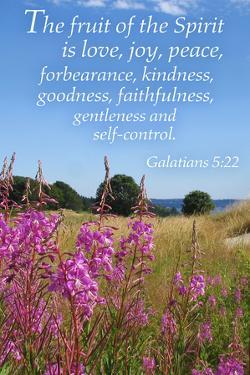 Galatians 5:22 - Inspirational by Lantern Press