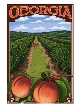 Georgia - Peach Orchard Scene by Lantern Press