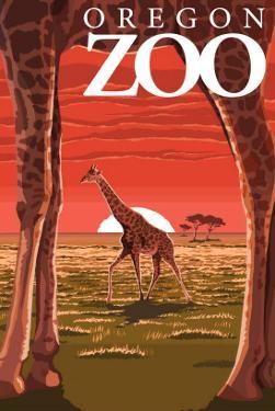 Giraffe Sunset - Oregon Zoo by Lantern Press