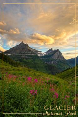 Glacier National Park, Montana - Sunset and Flowers by Lantern Press