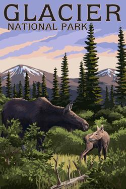 Glacier National Park - Moose and Baby Calf by Lantern Press