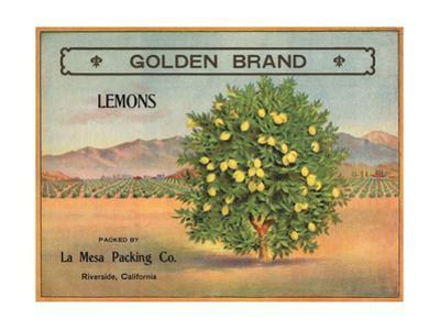 Golden Brand - Riverside, California - Citrus Crate Label by Lantern Press