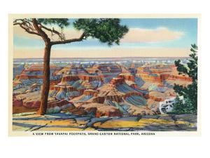 Grand Canyon Nat'l Park, Arizona - Yavapai Footpath View of Canyon by Lantern Press