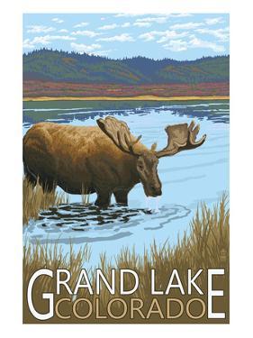 Grand Lake, Colorado - Moose and Lake by Lantern Press