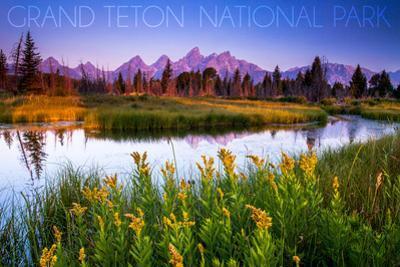 Grand Teton National Park, Wyoming - Flower Foreground by Lantern Press