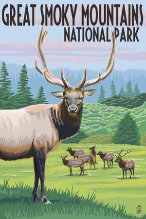 Great Smoky Mountains National Park - Elk Herd by Lantern Press