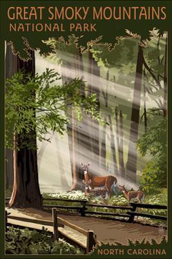 Great Smoky Mountains, North Carolina - Deer and Fawn by Lantern Press