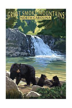 Great Smoky Mountains, North Carolina - Falls by Lantern Press