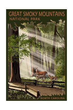 Great Smoky Mountains, North Carolina - Pathway in Trees by Lantern Press